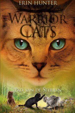 warrior cats pad van de sterren front